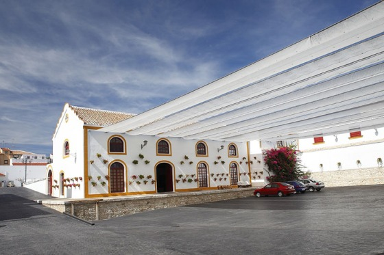 The original structure of an olive-oil mill in the heart of Andalucia.
